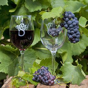 Grapes-ad-Wine-Craig-288px